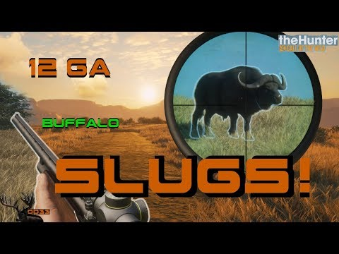 Hunting Cape Buffalo with the 12 GA SLUGS!! (Realistic) Call of the WILD THEHUNTER 2018