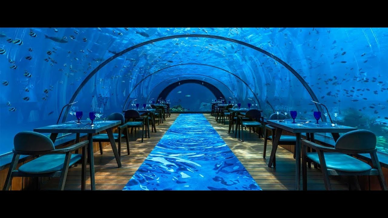 5.8 Undersea Restaurant by Hurawalhi - YouTube