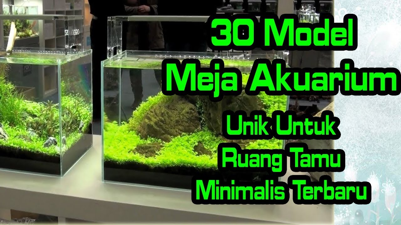 Desain Aquarium Sederhana Aquarium Model Terbaru Best House Design