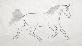 How to draw a horse / Hur man ritar en häst