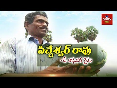 Krishna District Farmer Picheswar rao Success Story in Natural Farming | hmtv Agri