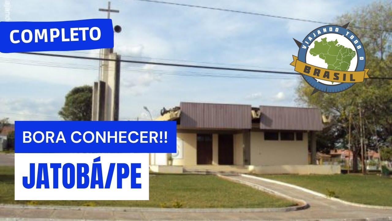 Jatobá Pernambuco fonte: i.ytimg.com