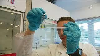 Œufs contaminés : à Saint-Étienne-du-Rouvray, un laboratoire détecte le Fipronil
