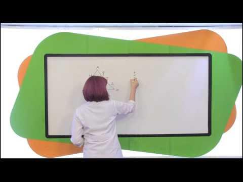 10.Sınıf Matematik Görüntülü Eğitim Seti (Soru Çözümleri)