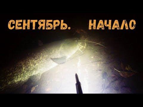 Подводная охота - Сентябрь. Начало