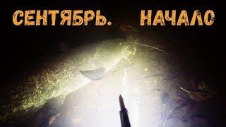 Подводная охота Сентябрь Начало