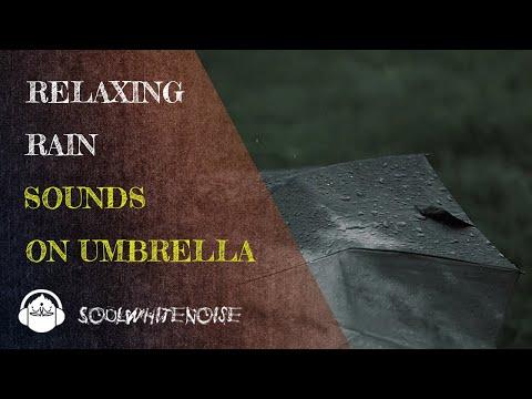 Rain Sounds On Umbrella To Help You Fall Asleep Easier