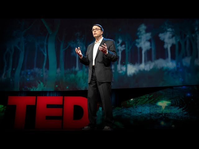 How will we survive when the population hits 10 billion? | Charles C. Mann