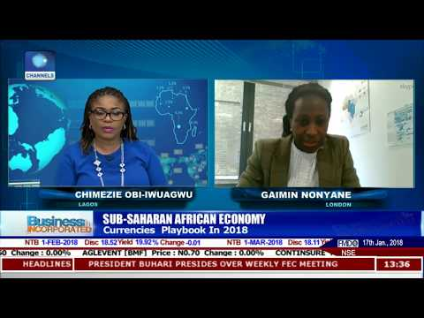 Outlook On Sub Saharan African Economy Pt.1 |Business Incorporated|