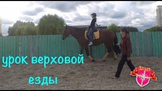 Урок верховой езды #2 / упражнения и езда на природе/ Конно-Спортивная база ЦСКА