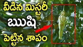 ఈ లేడి ఫ్రూట్స్ కి ఋషి పెట్టిన శాపం వల్లనే ఇలా అయ్యాయిMystery Tree Fruit In The Shape Of Woman Found