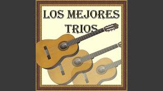 Provided to YouTube by Believe SAS Maldito Corazón · Los Panchos Lo...
