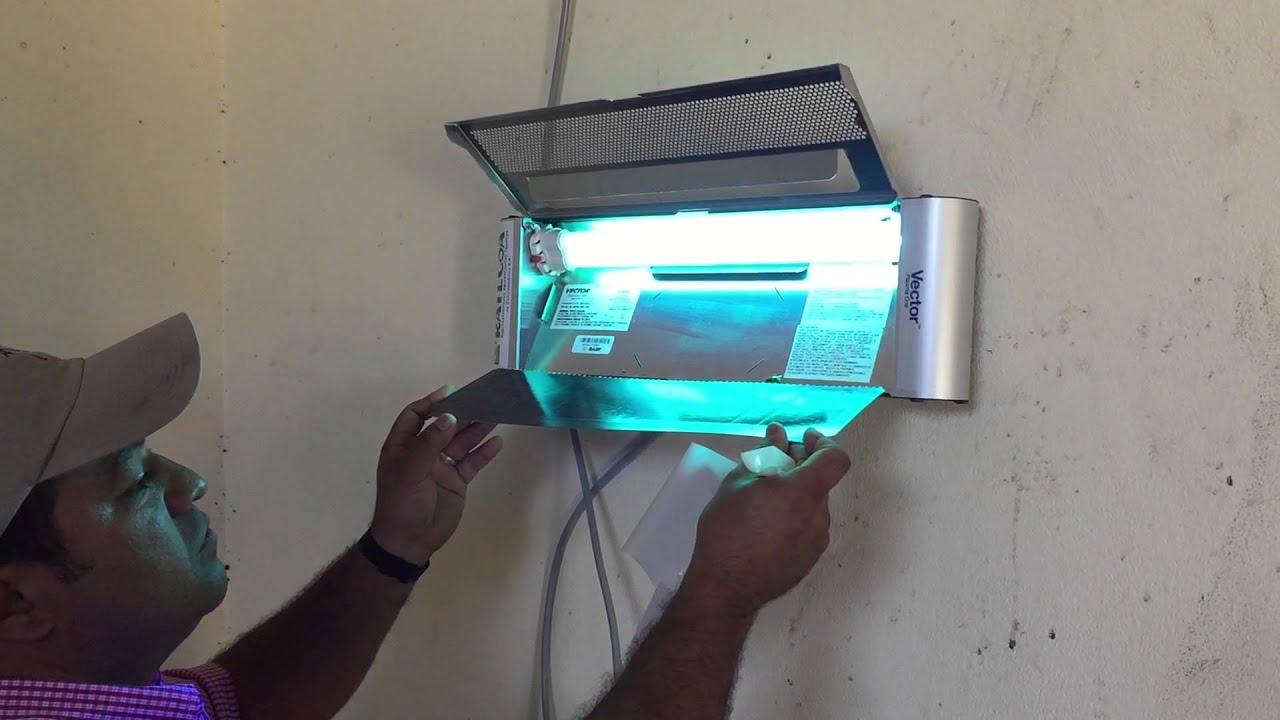 Lampara de Luz UV Vector One  YouTube