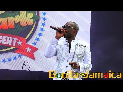 Busy Signal Performs 'Jamaica Love'