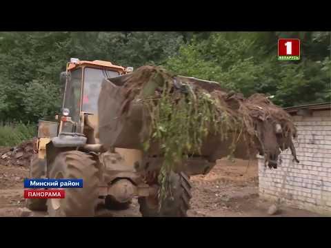 Несанкционированные свалки и лес мусора. Как привлечь внимание к проблеме. Панорама