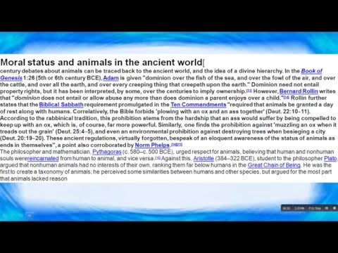 Download Youtube: Rights For Animals