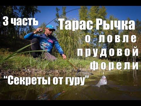 лучшие воблеры для ловли прудовой форели