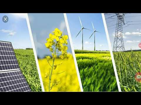 11 CLEAN ENERGY STOCKS TO BUY NOW IN 2020