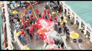 Bbc News   Airasia Qz8501  Plane Tail Is Lifted From The Sea Bed