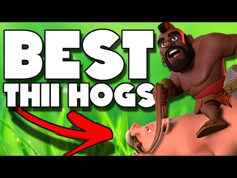 The Rise of Hogs at TH11 | BEST Three Star Hog Strategy | Clash of Clans