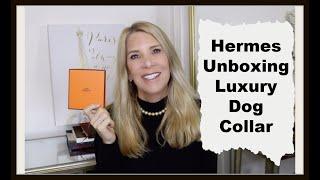Luxury Designer Dog Collar for Christmas--HERMES