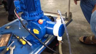 "Diaphragm Metering pump with 1/4"" tube 1450 rpm"