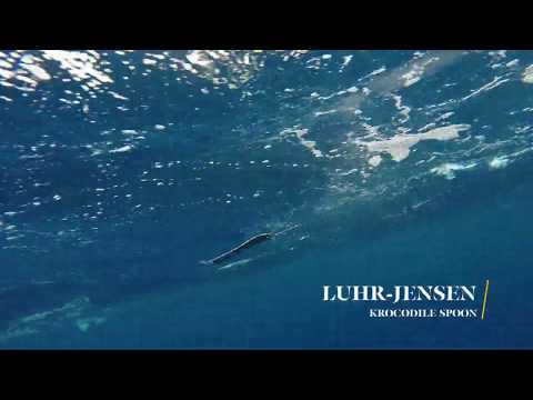 How Lures Swim: Luhr-Jensen Krocodile Spoon
