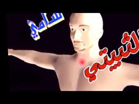 تحميل كتاب التوراة اليهودي pdf