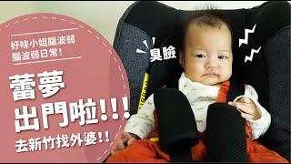 蕾夢出門啦去新竹找外婆【腦波弱日常】EP15