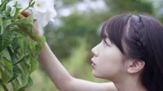 4K - Photo to Movie Ayumi Ishida.