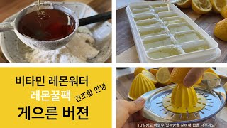 외출시 비타민 레몬워터 쉽게 챙기기 | 배종옥 레몬꿀팩…