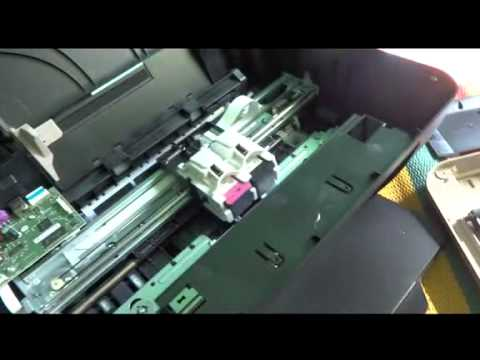 how to clean your HP printer 2515