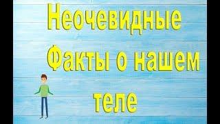 10 ИНТЕРЕСНЫХ И НЕОЧИВИДНЫХ ФАКТОВ О НАШЕМ ТЕЛЕ!