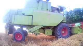 //ŻNIWA JĘCZMIENIA w GR HUĆ 2017// || Claas Dominator 85 Massey Ferguson 6612