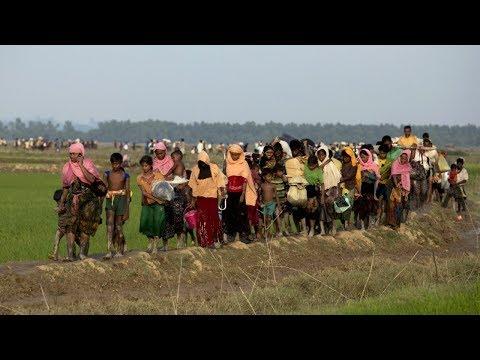 ООН призывает Мьянму прекратить преследование мусульман-рохинджа (новости)