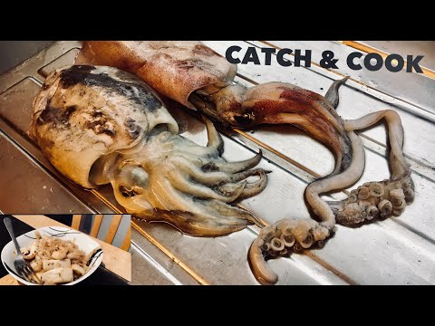 SQUID & CUTTLEFISH, Catch, Clean, Cook! Cooking Squid And Cuttlefish Noodles