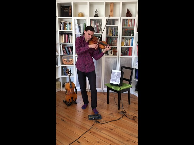 Sergey Malov Tutorial on Mozart's violin concerto 5
