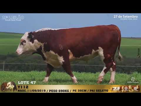 LOTE 047