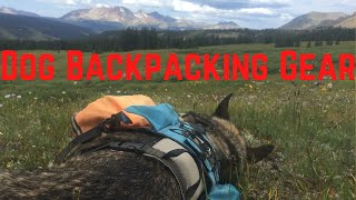 Dog Backpacking Gear Lİst 2020 [Weekend Trips and Thru-Hikes!]