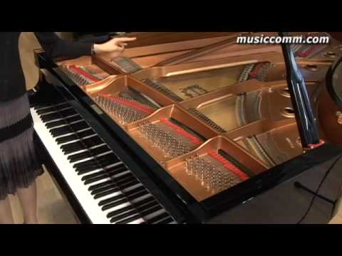 introduction of classic piano lesson by Lisa Yui