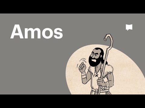 Buchvideo: Amos