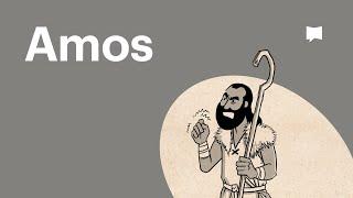 Buchvideo Amos