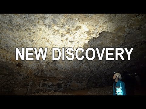 Surveying in Mammoth Cave's New Discovery Section