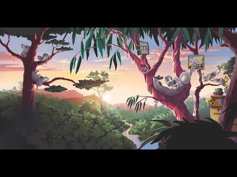 Koos de Koala - crowdfunding video