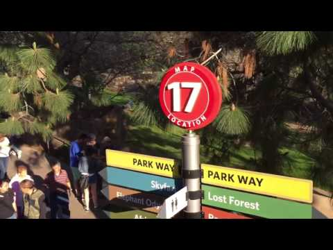 Guided Bus Tour at San Diego Zoo