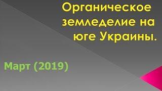 Органическое земледелие на юге Украины (март 2019)