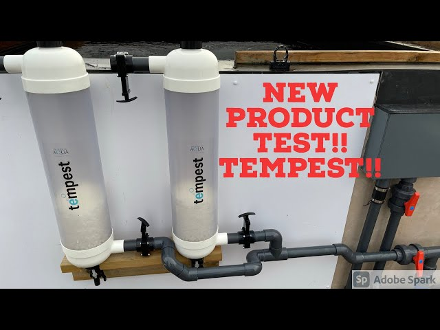 NEW FILTER FROM EVOLUTION AQUA!!!! TEMPEST!!