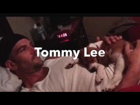 Tommy Lee tribute video