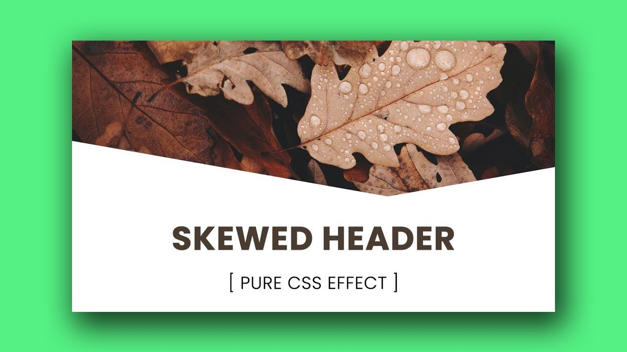 Skewed Header using HTML & CSS   Pure CSS Effects