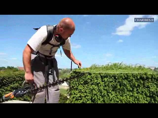 Chronique Jardinage Bien Tailler Votre Haie